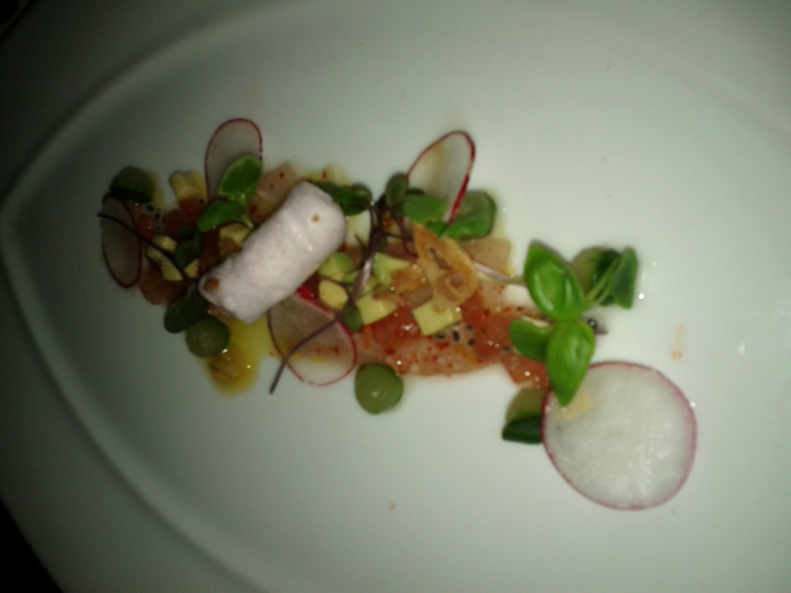 COURSE 2 (alternative): Hamachi Crudo, radish, avocado, tomato, basil ...